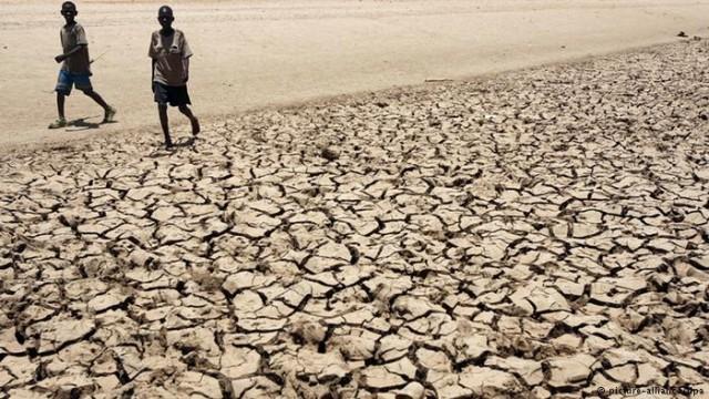 Глобальное потепление: сколько будет стоить для человечества изменение климата?