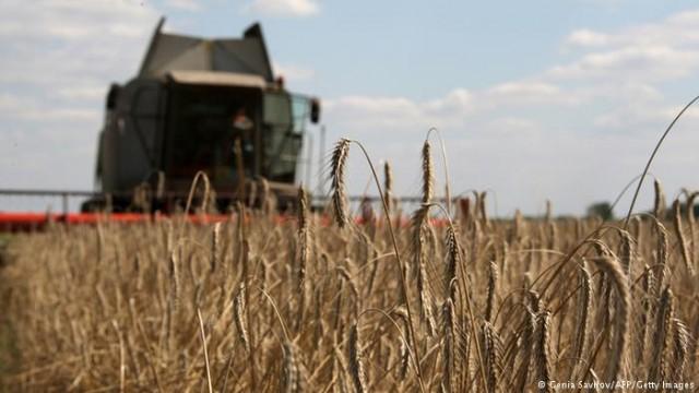 Глобальное потепление дорого обойдется украинским аграриям