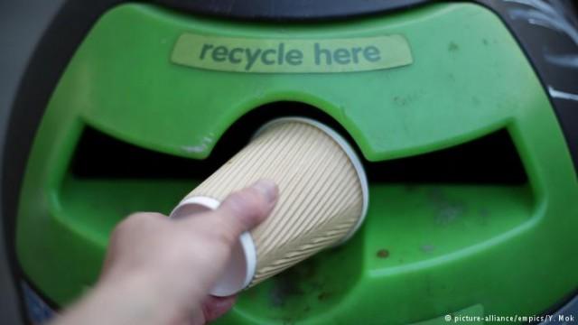 Сортировка мусора по-немецки: эксперимент DW (видео)