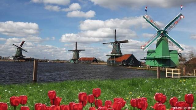 Мельник в Нидерландах - профессия исчезает (видео)