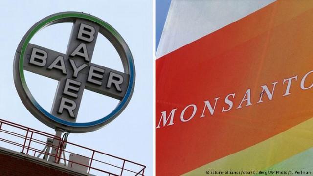 Немецкий гигант Агрохима Bayer завершил историческое поглощения Monsanto