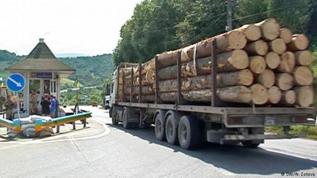 Гройсман: Контрабанда украинского леса составляет 6-8 миллиардов гривен