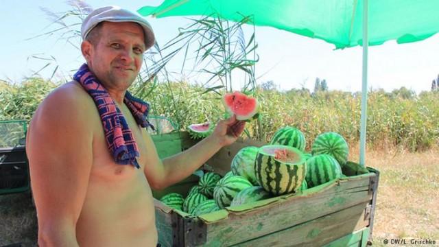 Президент Украины подписал закон о семейных фермерские хозяйства