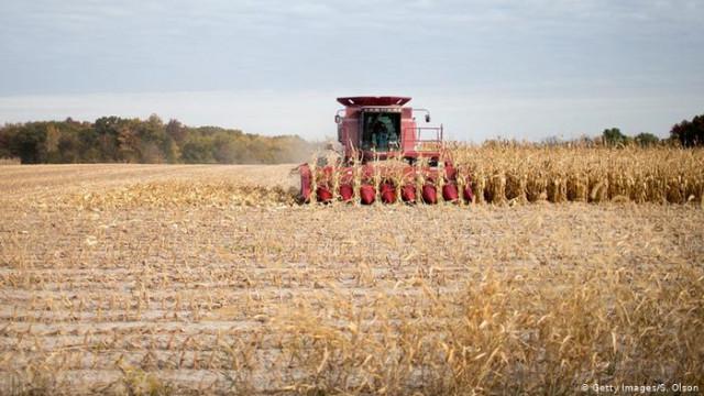 Китай прекратит импорт сельскохозяйственной продукции из США