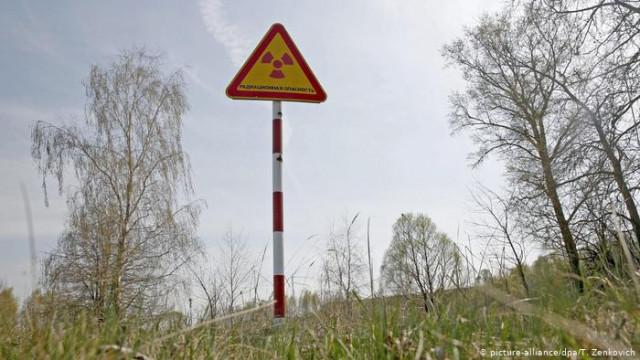 """""""Чернобыльская земля"""" на продажу: земельная реформа в зоне отчуждения (видео)"""