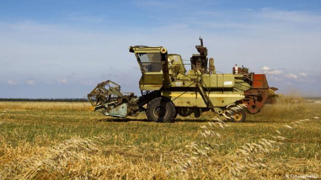 Теплая зима и сухая весна: Украинские аграрии боятся потерять урожай