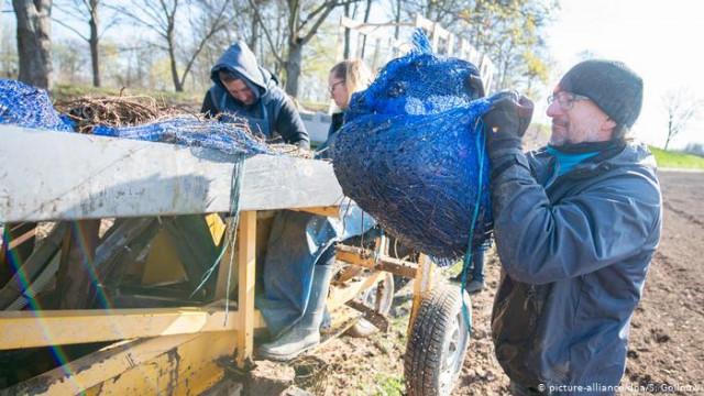 Коронавирус ли откроет ЕС границы для украинских сезонных работников?