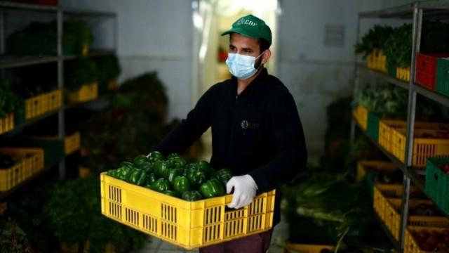 Коронавирус 5 разрушительных последствий для пищевой индустрии