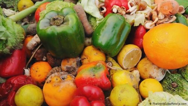 Что делать фермерам с овощами, когда закрыты рынки? (Видео)
