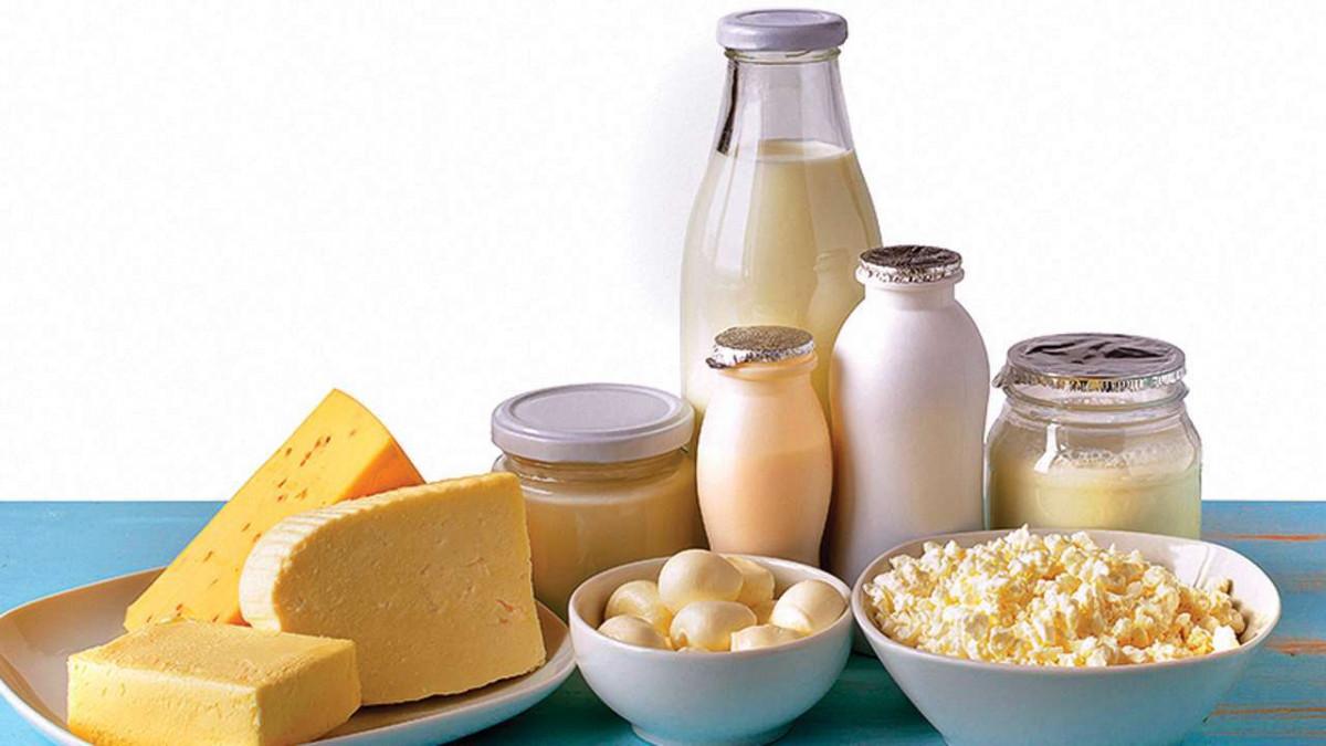 Молочная продукция оптом